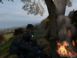 DayZ – Basic Survial Guide in the woods. 3 - steamlists.com