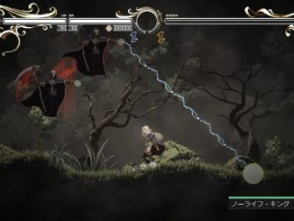 Record of Lodoss War-Deedlit in Wonder Labyrinth- – Archery Game S Rank Guide (Kashue's Bow) 1 - steamlists.com