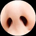 Roblox Wisteria - Shop Item Enhanced Nose