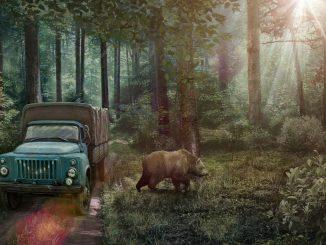 The Wild Case – Wild Case 100% Achievement and Walkthrough 20 - steamlists.com