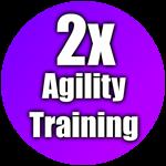 Roblox Dragon Ball Rage - Shop Item 2x Agility Training