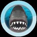 Roblox SharkBite - Badge Sharkinator