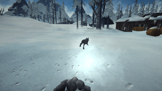 The Long Dark - Advanced rock cache placing + Top 5 caches per region - Advanced tecniques for rocks caches - 13BE517