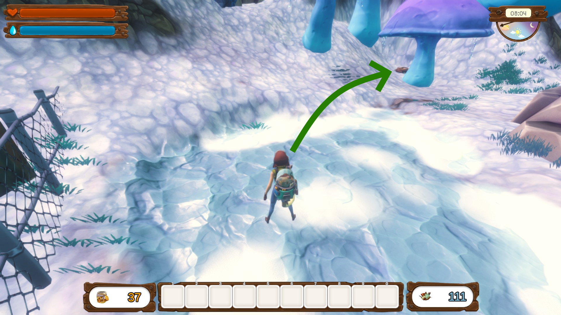 No Place Like Home - Feather Location Tips Guide - Frozen Peaks - 2291D41