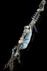 Horizon Zero Dawn - List of All Weapon + Detail Information - Icerail - 894CE5C