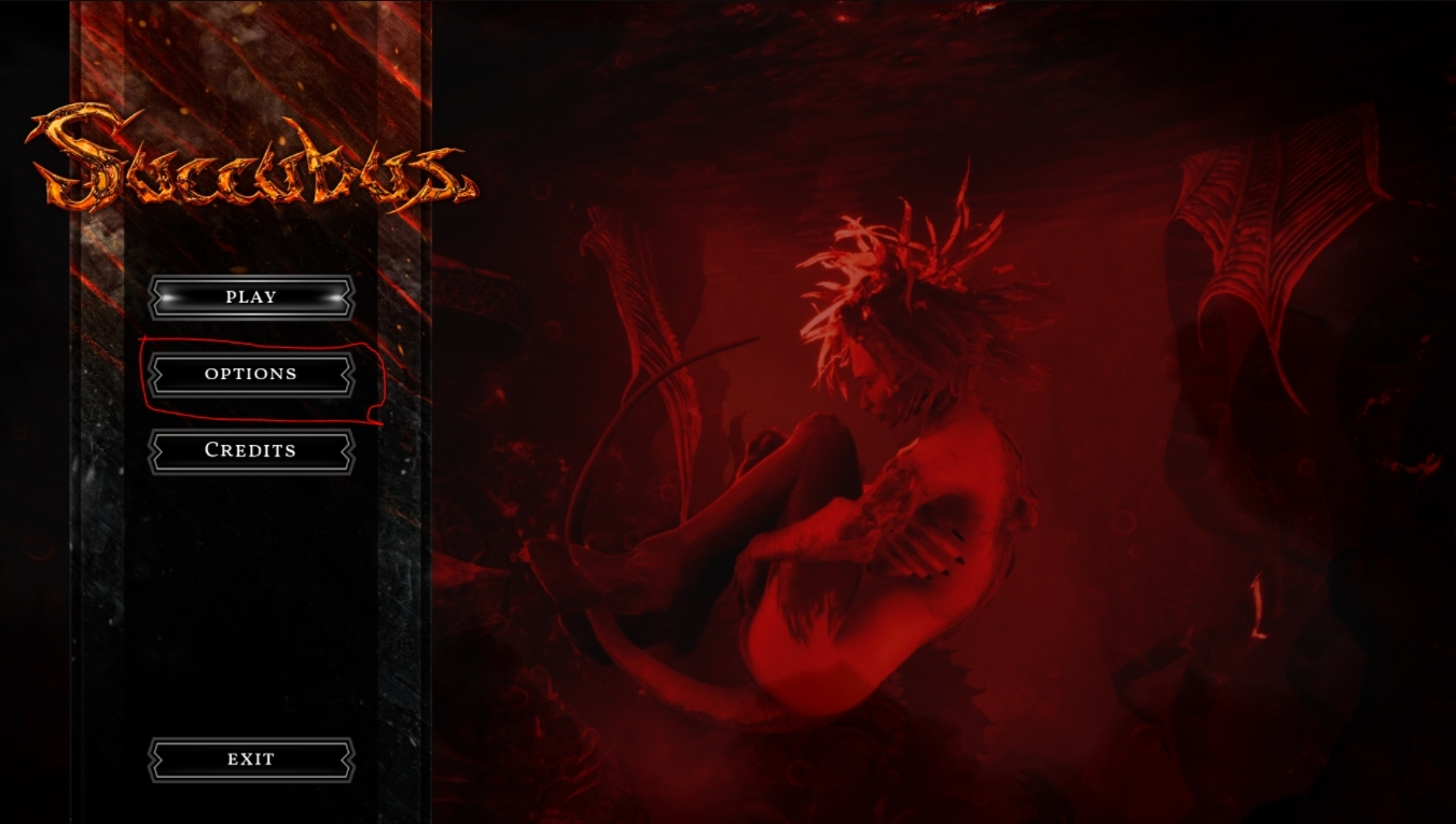 SUCCUBUS - How to Set the Game to Uncensored Guide - Applying the uncensoring ingame - 785A5A3